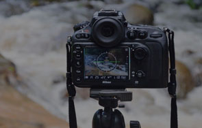 Become a freelance photographer